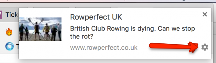Rowperfect new article notifications