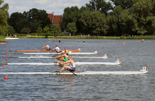 Rowing single sculls in a race, rowperfect