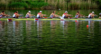 Mens rowing eight at the catch
