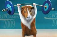 (For German speakers guinea pig is equivalent to Versuchskaninchen)