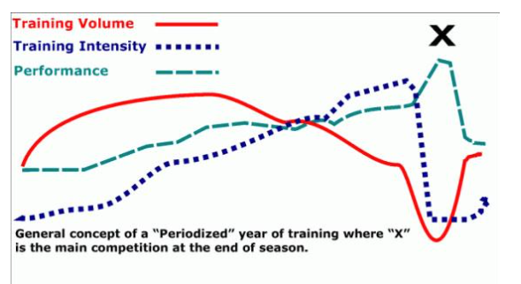 Rowing periodisation
