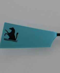 miniature oar designs hand painted