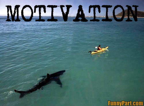 You're less likely to be sharkbait in open water because you row in numbers