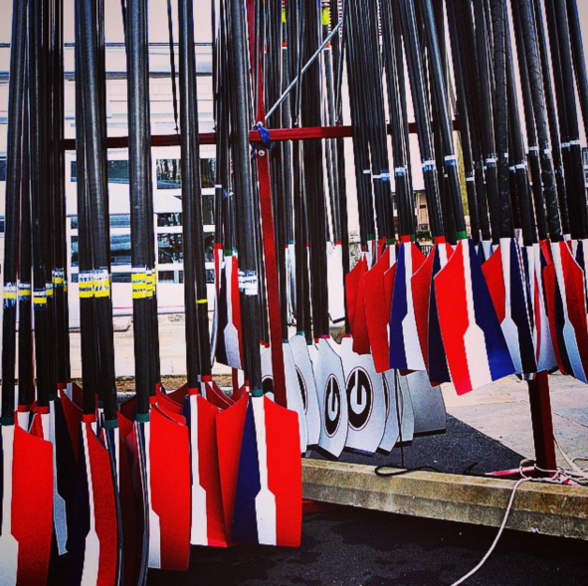 Look at all those oars! Storage Courtesy of Space Saver Rowing Systems