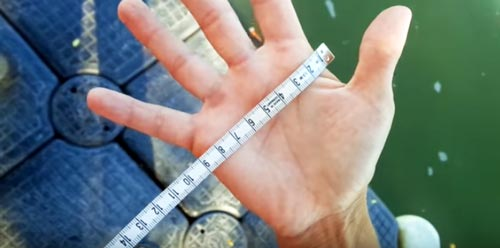 Measure your Hand for Rowing Gloves Rowing Glove Size Chart Rowperfect