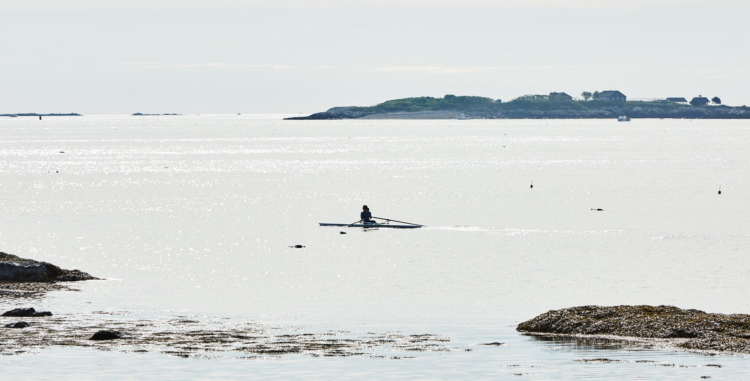 Open water sculling rowing