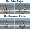rowing stroke cycle technique
