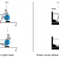 rowing Static erg versus dynamic erg explained.