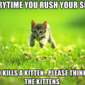 Kittens die if you rush the slide.