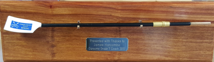 Trophy rowing oar prize