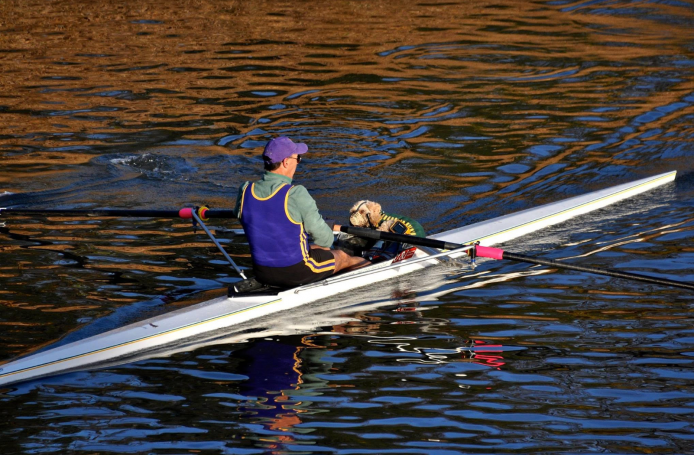 rowing sculling, dog in boat, dog in rowing boat,