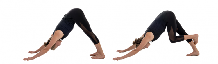 Stretch, rowing stretch, Downward Dog and variant with hooked foot