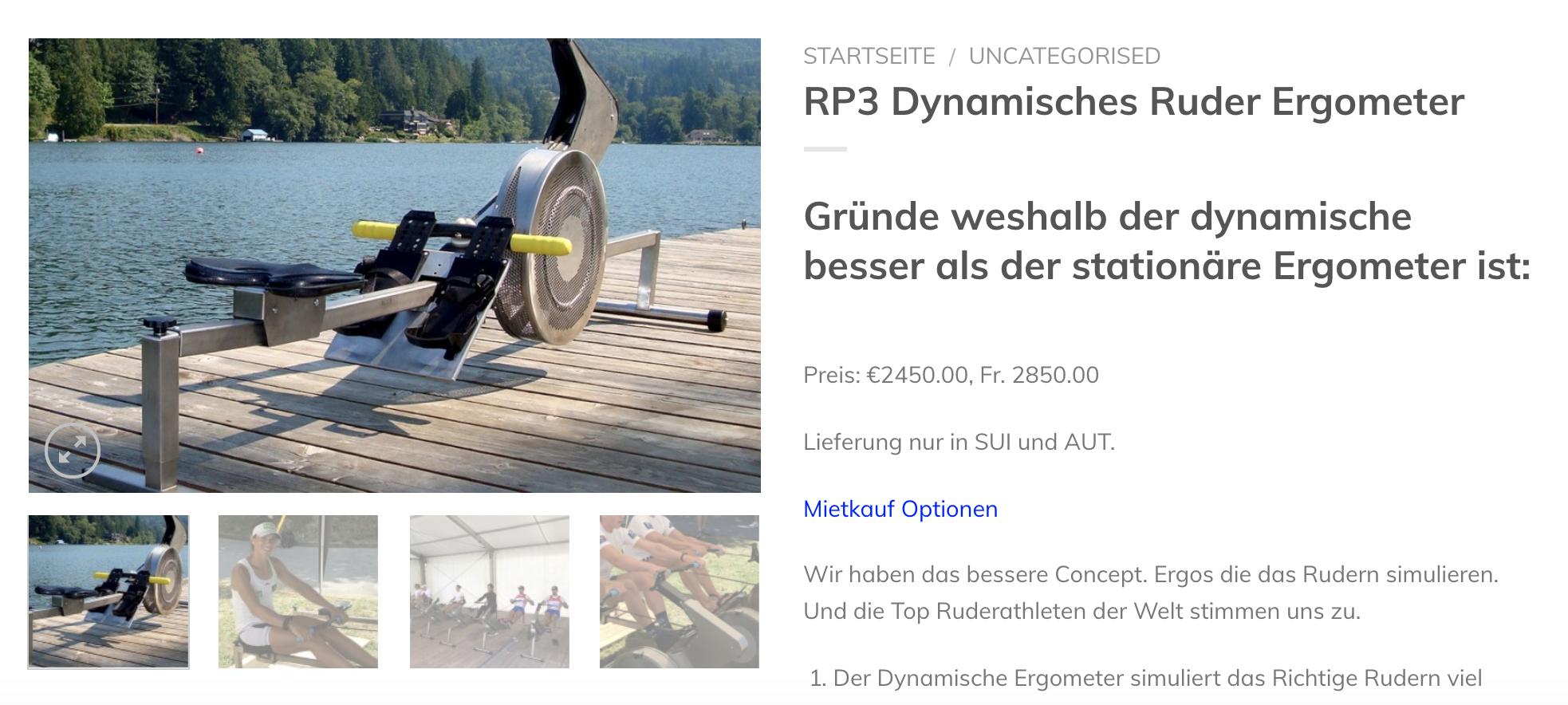 RP3 dynamishes Ruder Ergometer
