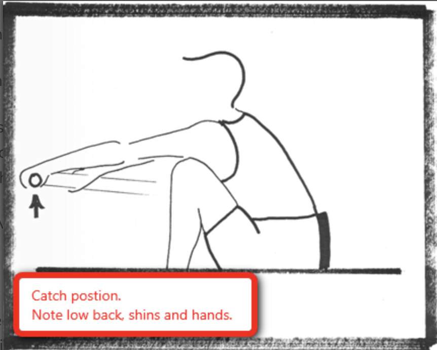Rowing and Sculling Catch Position, rowperfect, rowing technique
