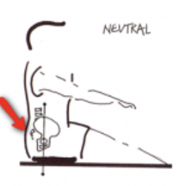 neutral rowing posture, rowing posture, neutral spine
