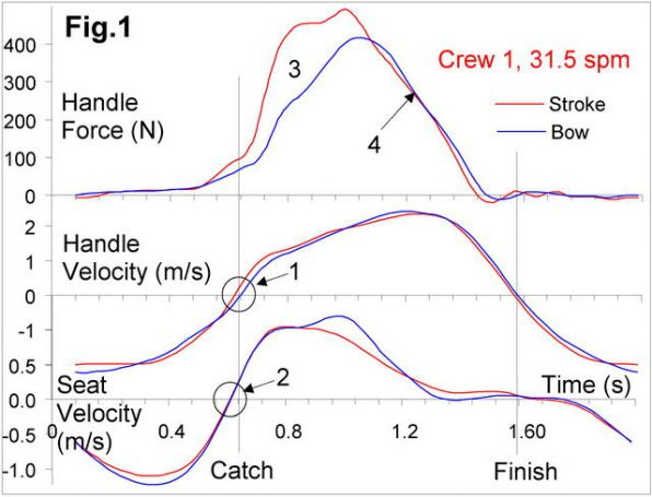 rowing data, rowing crew compare,